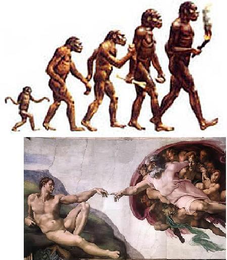Debate sobre las teorías del origen del hombre
